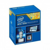 Intel Xeon E3 1240V3 (Up to 3.8Ghz/ 8Mb cache)